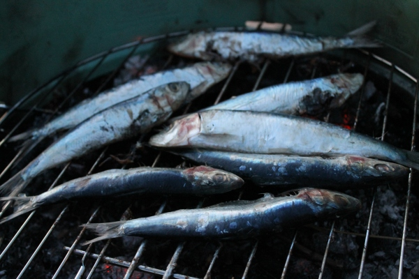 Sardine and mackerel rillettes - Culinary Correspondence