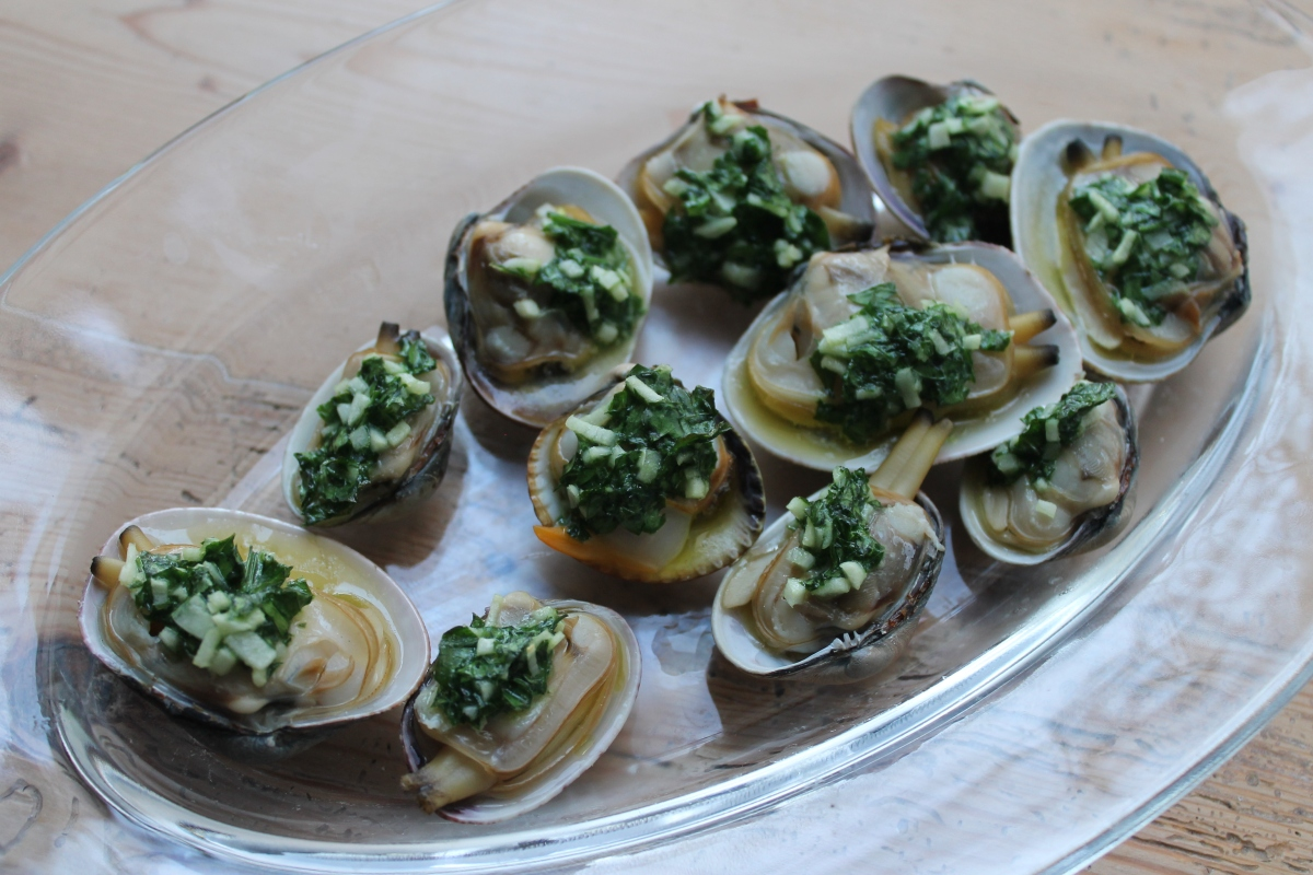 Palourde clams with garlic and parsley butter