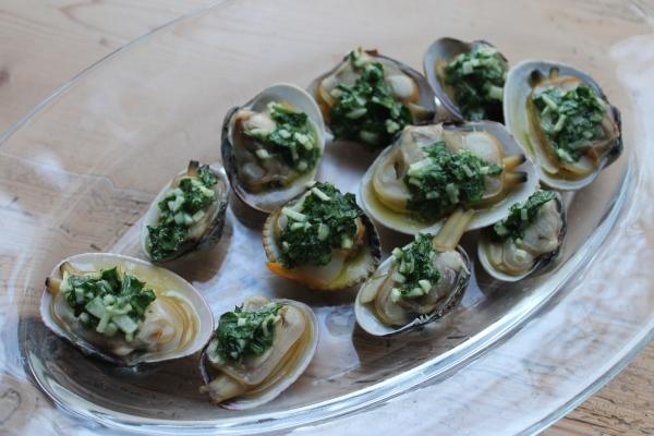 Palourde clams