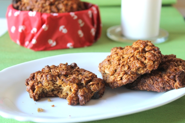 Oatmeal cranberry pecan cookies - main